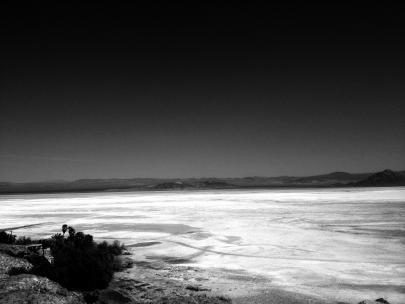 Mojave desert  4