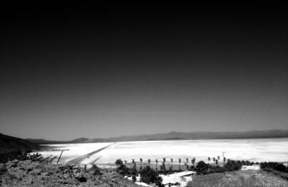 Mojave desert  5