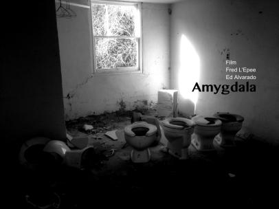 """Amygdala"" (2014)"